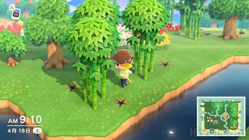 の タケノコ どうぶつ 森